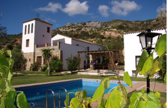 1165 Andalusian Country-house