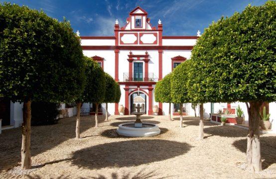1209 The Palacio